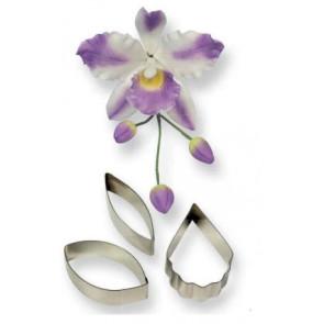 Cortador Orquídea Cattleya